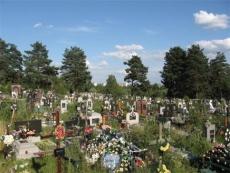 Мать-убийца не донесла новорожденного младенца до кладбища (Марий Эл)