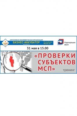 Семинар «Проверки субъектов МСП»