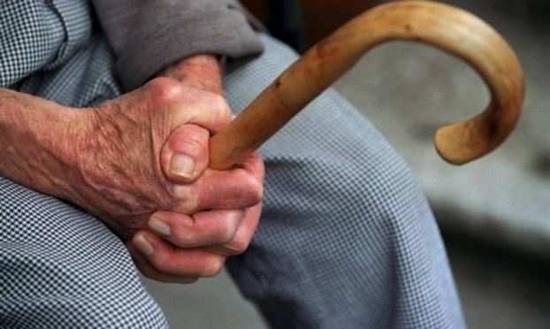 В Медведевском районе «тимуровцы» обокрали 88-летнего пенсионера
