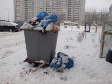 В Йошкар-Оле бомжи пытались сдать мусорный бак на металлолом