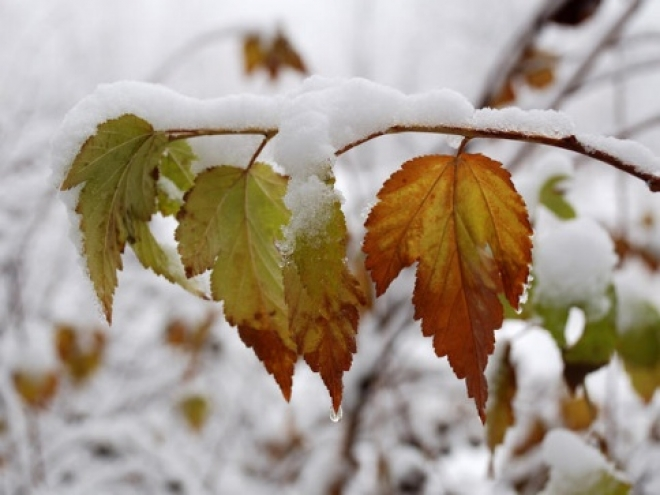 Синоптики обещают долгожданный снег