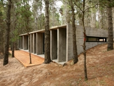 В Госдуме РФ пообещали рассмотреть инициативу Минприроды о капитальном строительстве в лесах