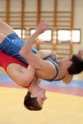 Республиканский турнир по греко-римской борьбе постер