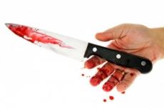 Расследование жестокого убийства в Кокшайском доме-интернате завершено