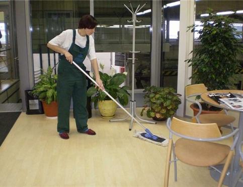 Профессиональные уборщики - кто они