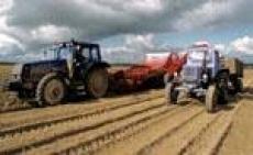 Засуха в Марий Эл спровоцировала введение «Чрезвычайной ситуации»