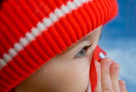"""В Йошкар-Оле столбики термометров """"голосуют"""" против учебы младших школьников"""