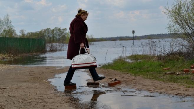 Дома в селе Кокшайск могут быть затоплены в результате весеннего половодья