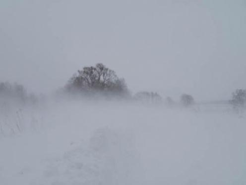 Последствия снежной стихии в Марий Эл устранены