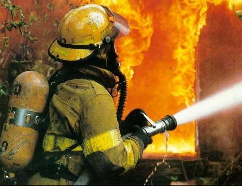 В Марий Эл сгорели хлев, сараи и сено; домашний скот удалось спасти