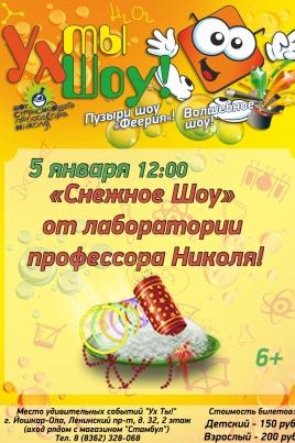 Снежное шоу от Научного шоу профессора Николя постер