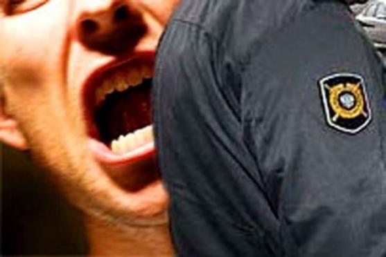 За укус полицейского суд назначил наказание