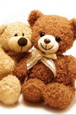 Медвежонок и его друзья постер