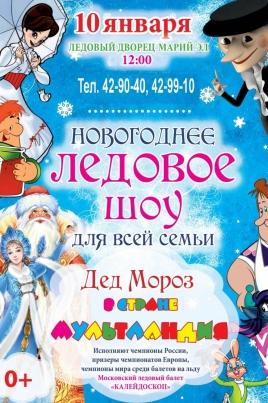 Новогоднее Ледовое шоу постер