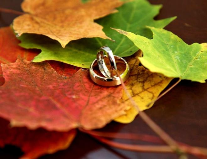 В Марий Эл начинается пора свадеб