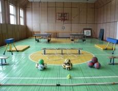 Спортивные школы передадут в ведение Минспорта