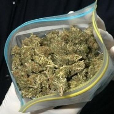 Более 1,5 килограммов наркотиков изъято за первые две недели нового года