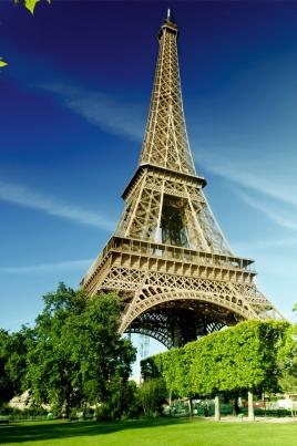 Открытый показ фильма «Кухня в Париже» постер