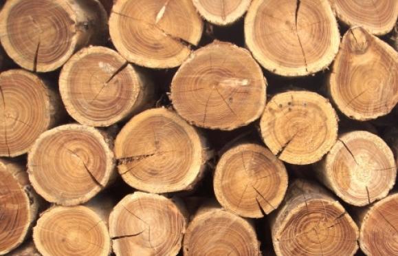 В Марий Эл мужчина украл деревянный сруб, вывезя его на санках