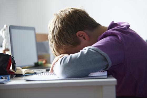 В российских школах могут появиться специалисты-суицидологи