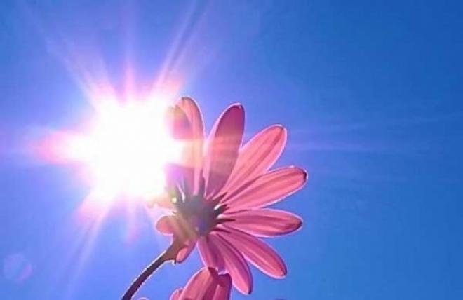 В Марий Эл пришла летняя жара
