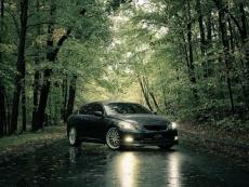 Эвакуаторщик помог жителю Звенигово спрятать автомобиль в лесу