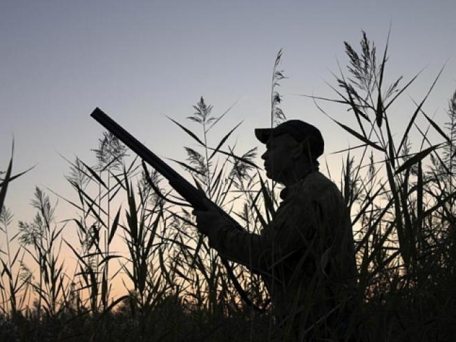 Завтра открывается охота на кабанов