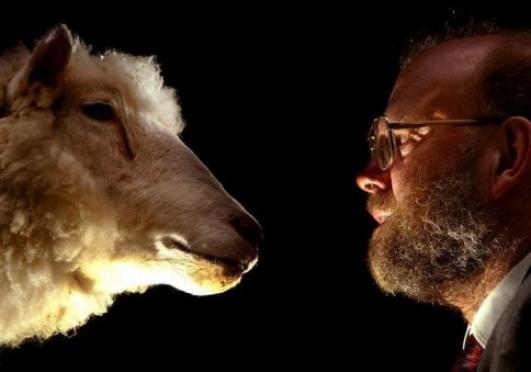 О клонированной овечке Долли узнал весь мир