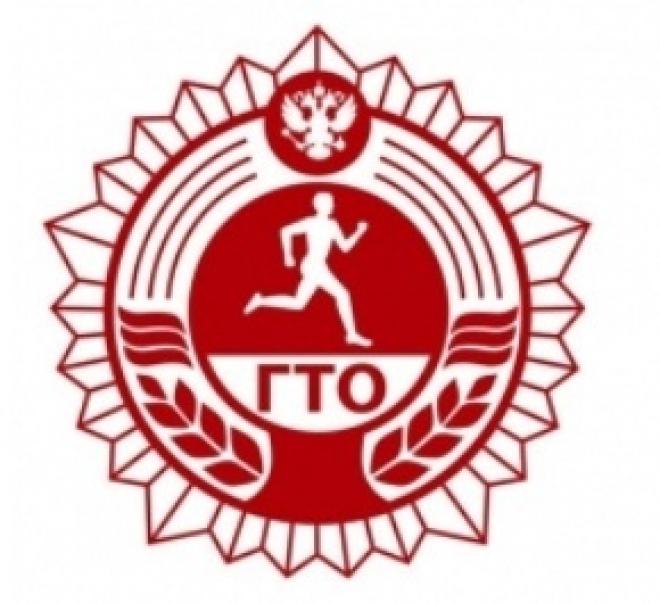 Почти 650 учеников столицы Марий Эл получат значки ГТО