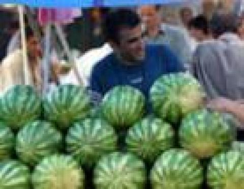 В Йошкар-Оле в августе откроются новые овощные мини-рынки