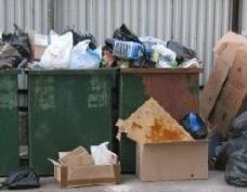В Йошкар-Оле за несвоевременный вывоз мусора оштрафовали домоуправление