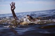 В деревне Шоя-Кузнецово утонул ребенок