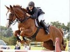 18 июня в полдень ДКСК «Чудо кони» более 15 юных всадников примут участие в «Детских заочных соревнованиях по преодолению препятствий FI».