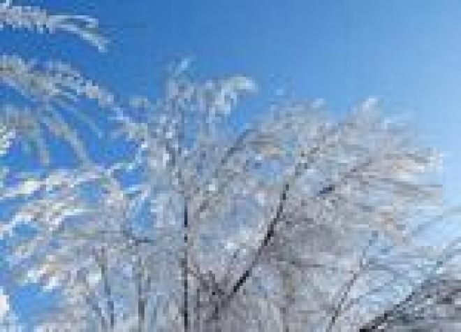 Морозная погода в Марий Эл продержится до конца января