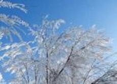 Погода может притормозить учебный процесс в йошкар-олинских школах