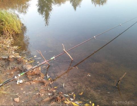 Спортивная рыбалка — в программе Олимпийских игр