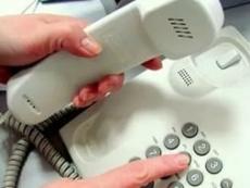 За неделю по телефону «горячей линии» правительства поступило 130 обращений
