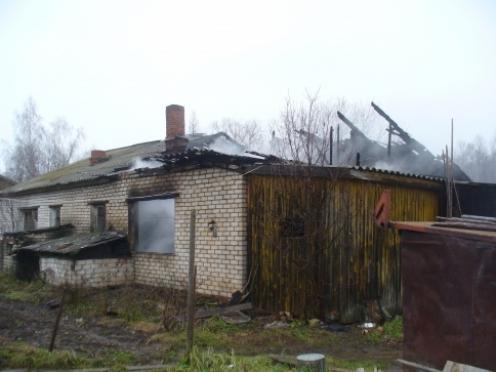 Два человека погибли на пожаре в Новоторъяльском районе