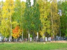 Полиция Йошкар-Олы ищет осквернителей могил