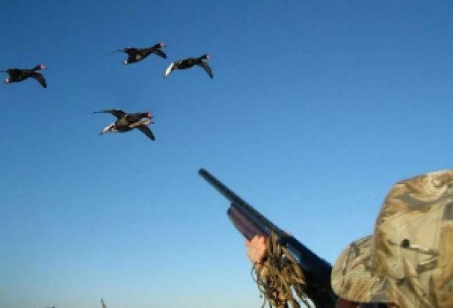 Через две недели в Марий Эл начнется летне-осенний сезон охоты
