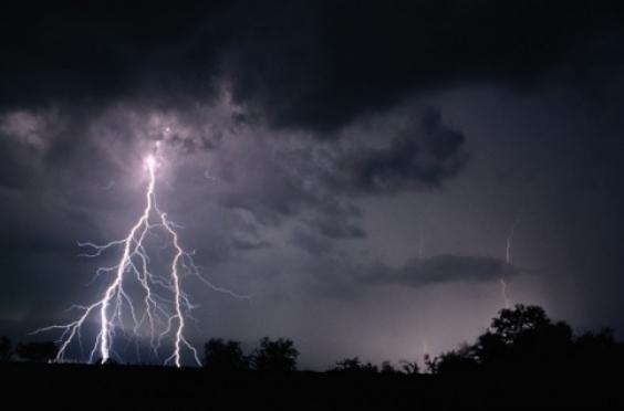 Шесть человек стали жертвами урагана в Марий Эл