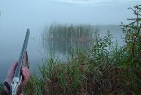 В Марий Эл весенняя охота пройдет по новым правилам