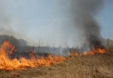 Вступили в силу новые правила разжигания костров на сельскохозяйственных землях