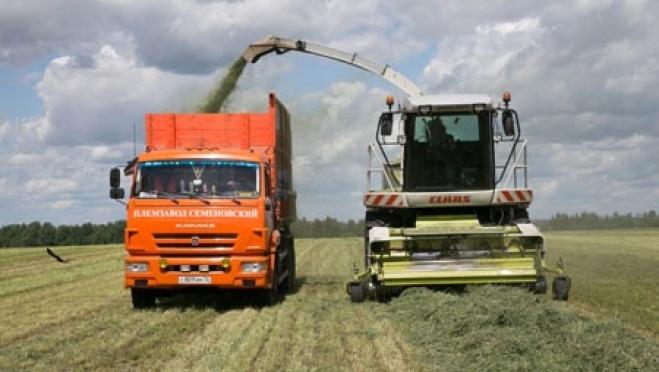 Крестьянские и фермерские хозяйства Марий Эл объединились вместе