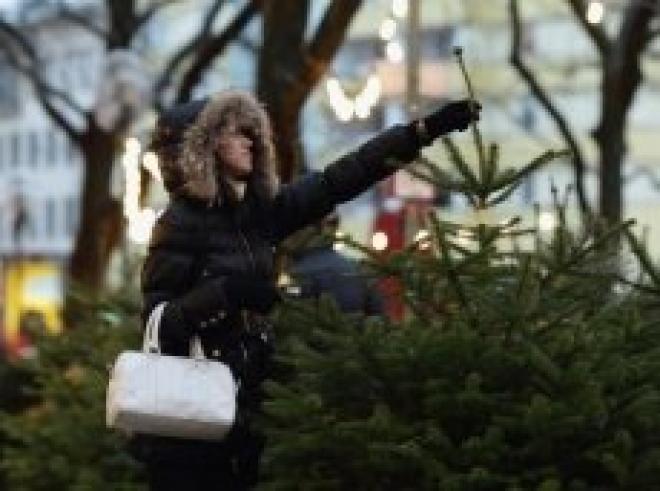 Медведевский зоопарк все еще ждет отслужившие свой срок новогодние ели
