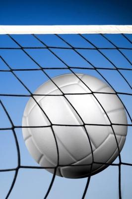 XXIV Турнир по волейболу. Мужские команды
