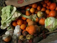 В «Пятерочке» продавали гнилые фрукты, перемороженную рыбу, просроченную колбасу и некачественное вино