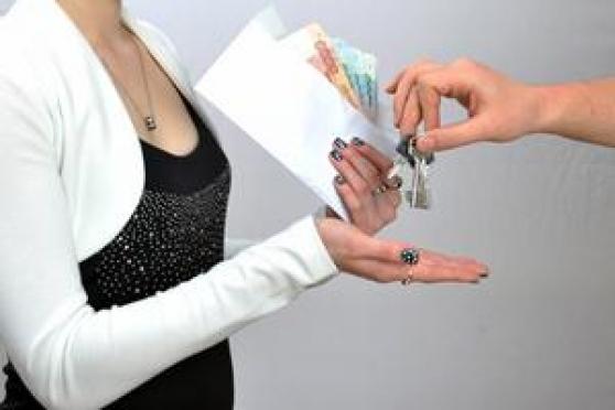 Налоговики Марий Эл ищут уклонистов-арендодателей