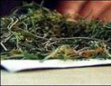 Жители Марий Эл избавляются от наркотиков странными способами