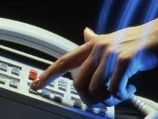 В правительстве Марий Эл включили телефон «горячей линии»